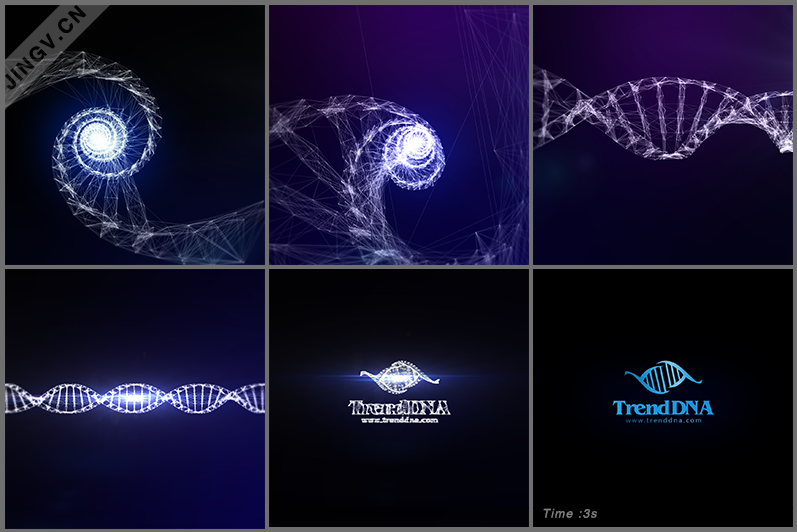 TrendDNA